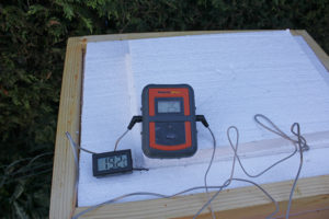 Thermometers in hive